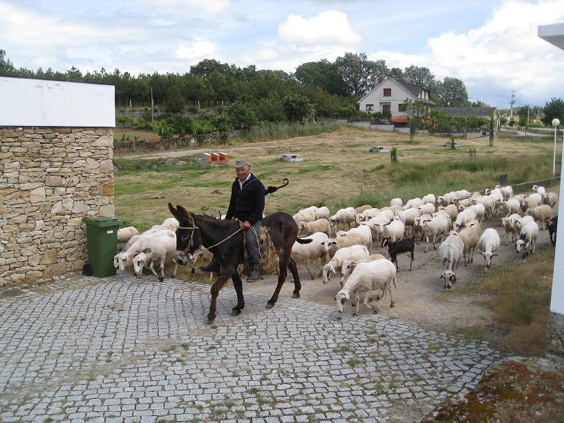 Onderweg naar Miranda do Douro